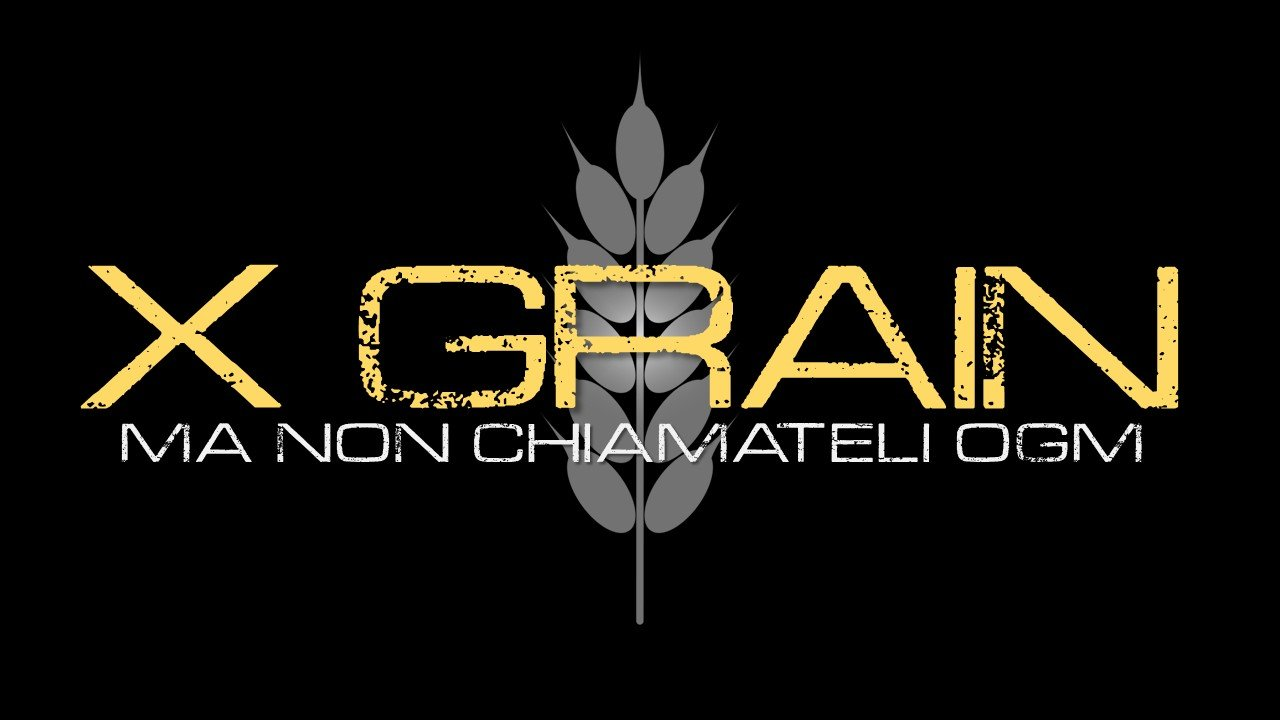 x-grain_banner